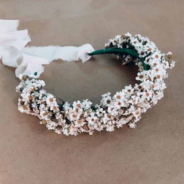 White-Flower-Crown Dried-Ixodia